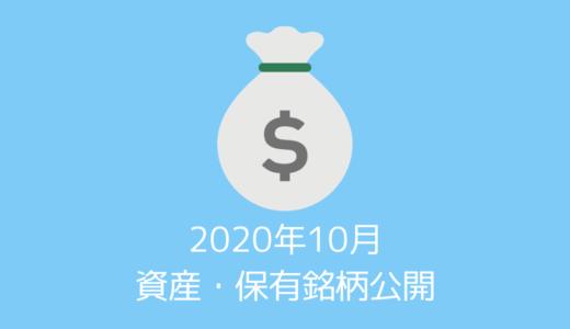 【資産・保有銘柄公開】20代夫婦の2020年10月時点の資産すべてを公開