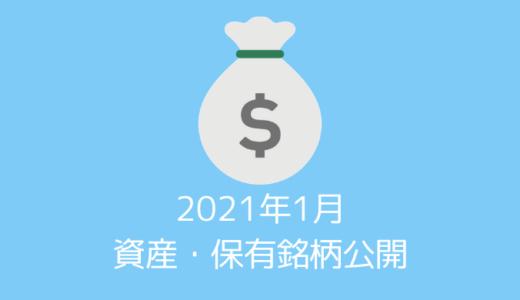 【資産・保有銘柄公開】20代夫婦の2021年1月時点の資産すべてを公開